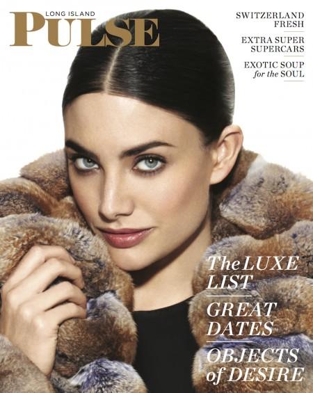 Book Cover: Long Island Pulse Magazine